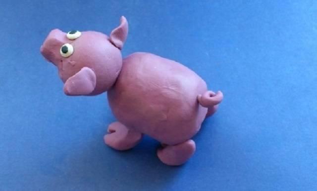 хвостик свинке