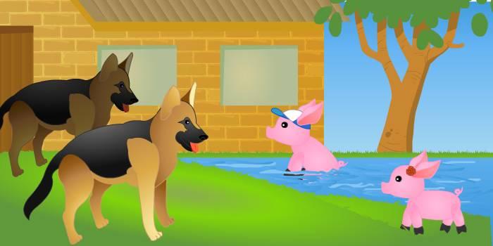 Собаки и поросёнок