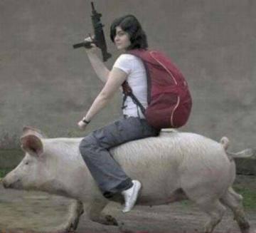 Свиньи на службе