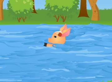 Как свинка из семейства диких кабанов поборола эпидемию и чуть не утонула