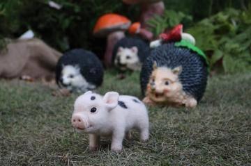 Игрушка мини пиги