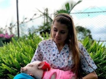 Ветеринар всея Колумбии