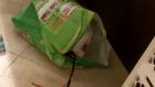 Хрюшка в пакете